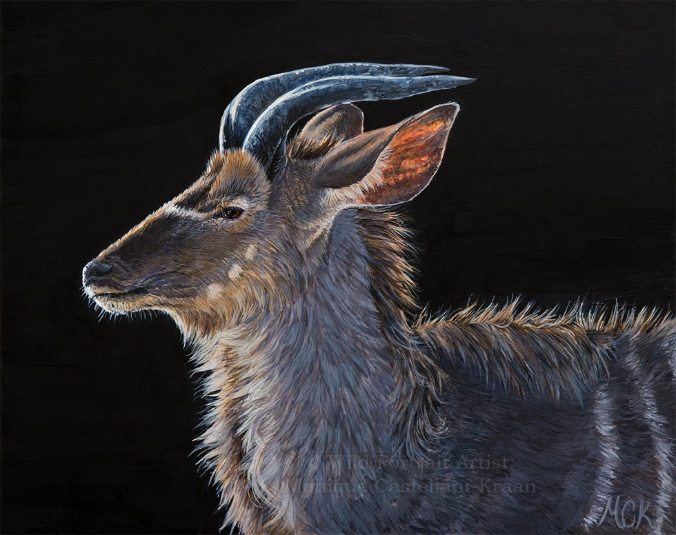"""Greater Kudu Portrait"" - 10 x 8 inches, Winsor and Newton acrylics on Ampersand Gessobord."
