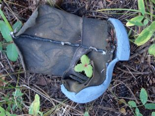 Child's Boot in Resilient Nature