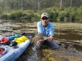 A quilaty Clarence River Bass