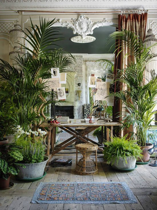 Office filled with house plants and a chic retro desk