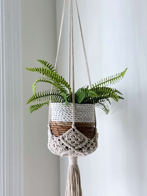small plant hanging in a woven basket