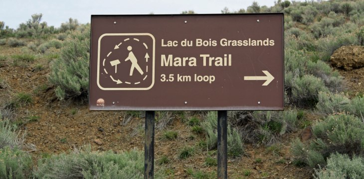 Mara Trail in April