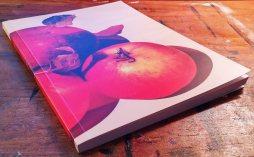 notebook-apple-season