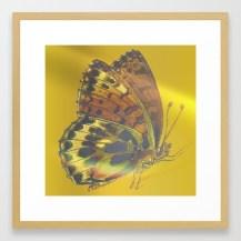 homeward351552-framed-prints