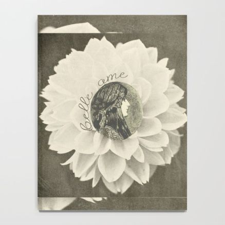 lotus-eater343610-notebooksbelle notebook