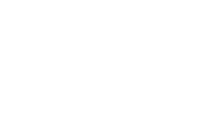 Wild Roots Coffee House