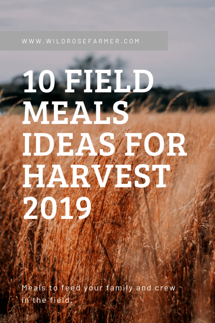 10 Field Meals Ideas for Harvest 2019