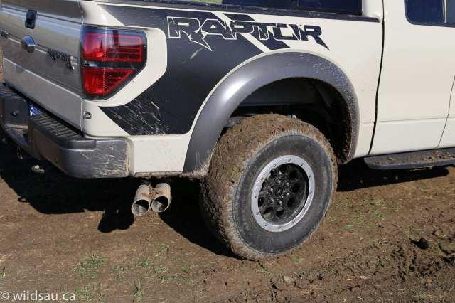 raptor muddy