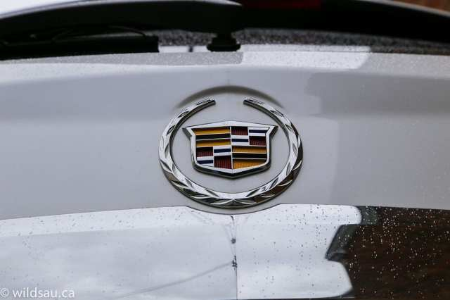 Caddy badge