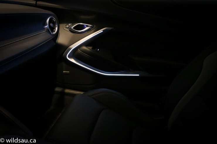 interior door handle light