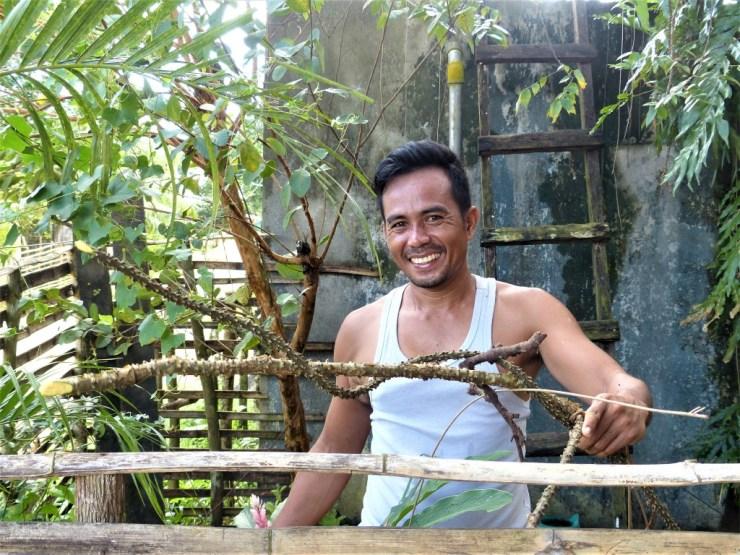 The Makabuhay vine (Tinospora rumphii Boerl), Buhing Kalipay