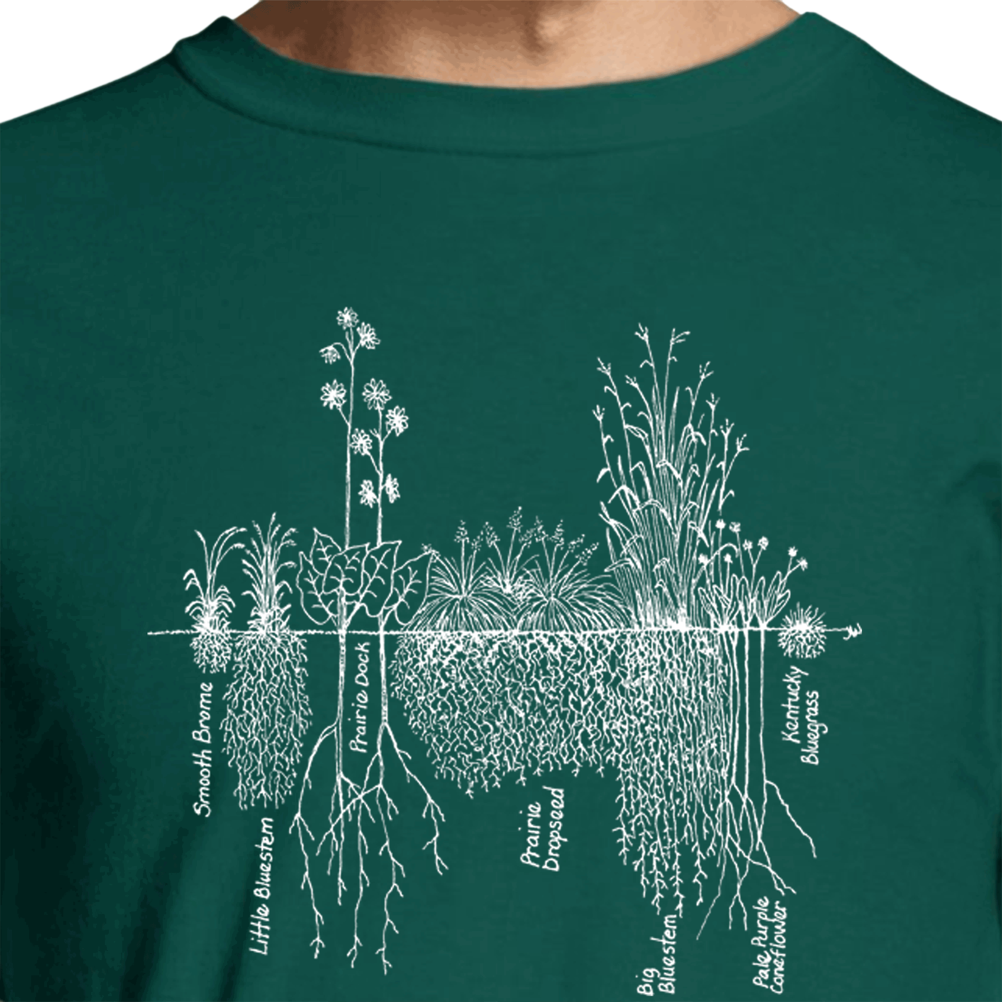 "Roots"" Short-Sleeve Tee"