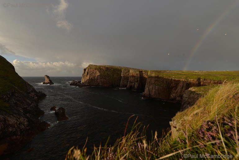 ©Paul McCambridge / MAC Visual Media Tory Island. Picture by Paul McCambridge