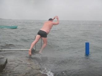 Polar Bear dives in