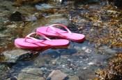 Pink flip flops floating