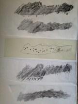 Rubbings and tracings of fish skin