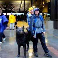 Exploring UW's Husky Stadium and Surviving a Rainy Day Football Game