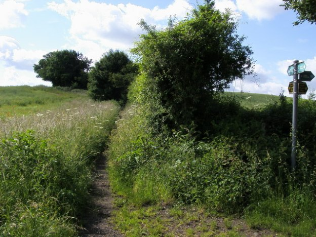Preparing for the Hertfordshire Border Walk