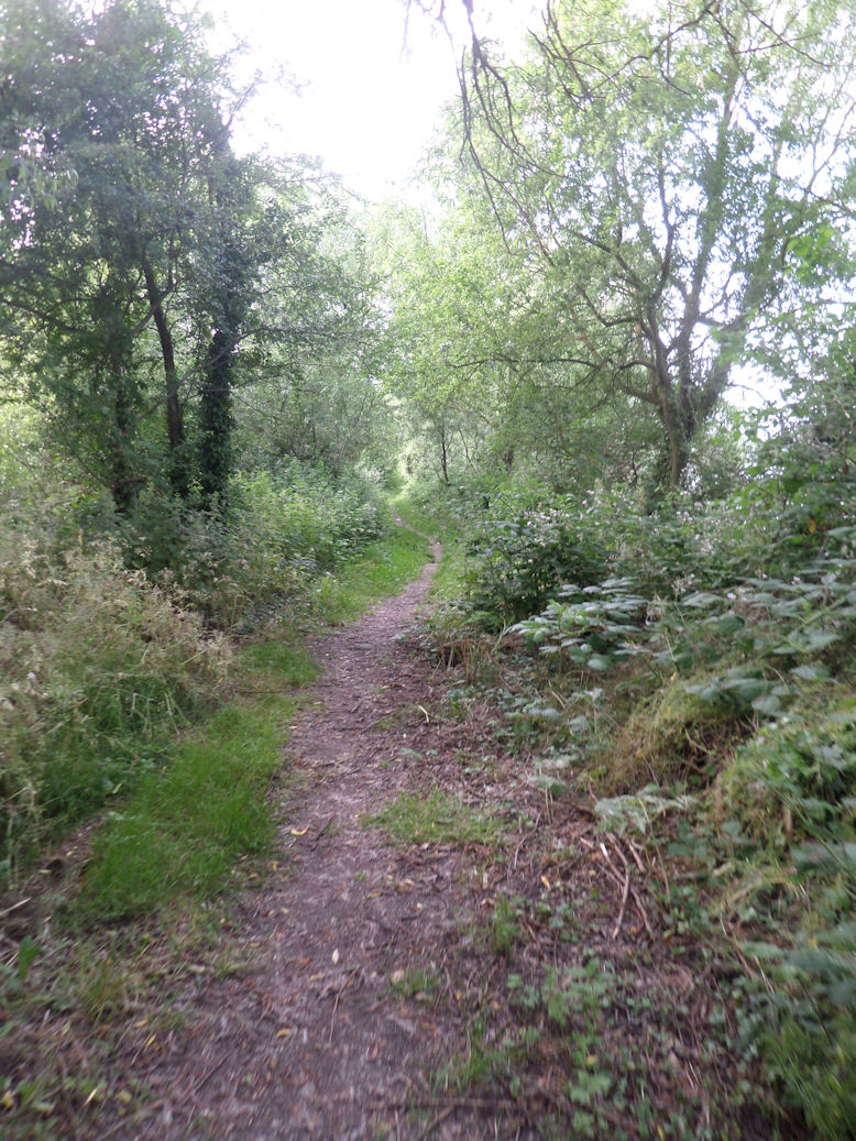 The Buckinghamshire Way: first steps