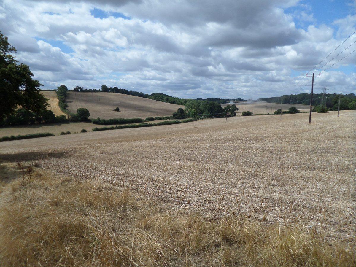Herts Embraced 1.3: Bovingdon to Hockeridge Bottom