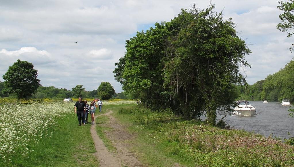 A Round-Surrey walk?