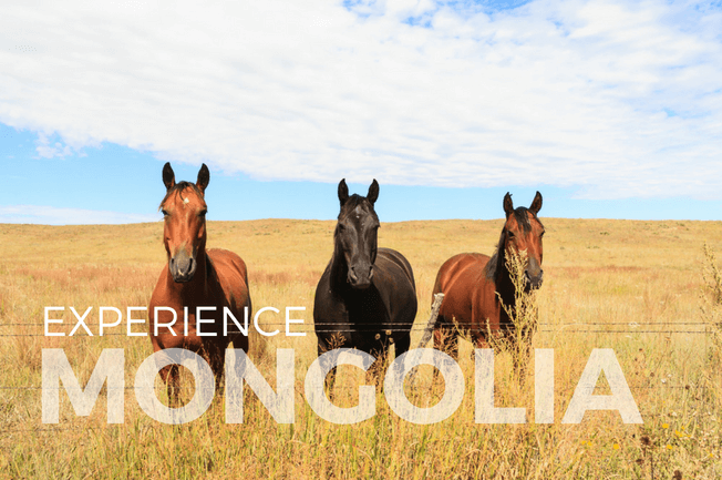 Orkhon Valley Horseback Adventure