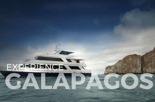 Galápagos Islands Eco-Yacht Adventure