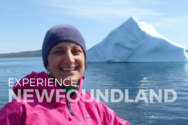 Icebergs and Arts Adventure