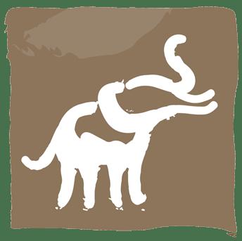 Safari icon.