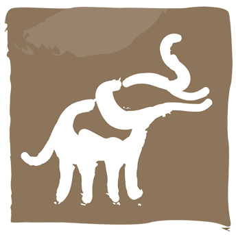 Safari icon.