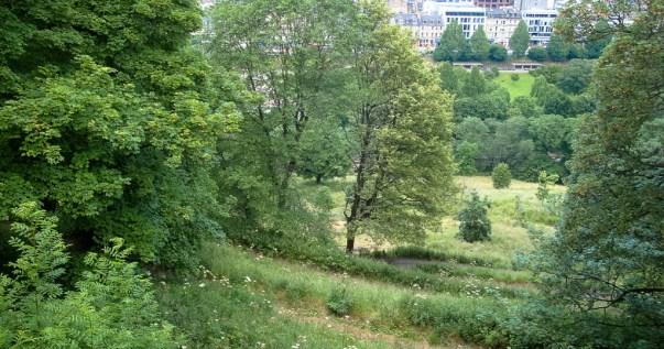 Scenic view from Edinburgh Castle