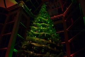 NGC Tree Lighting 2015-1