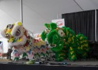 Lion Dance at 2016 Ottawa Dragon Boat Festival-5