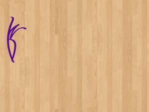 wood-floor-wilhelm-logo