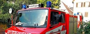 Freiwillige Feuerwehr Hedelfingen Feuerwehrfest Feierwehr zum Anfassen 20. und 21.7.2015 Stuttgart Hedelfingen