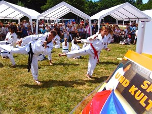 24 Taekwondo