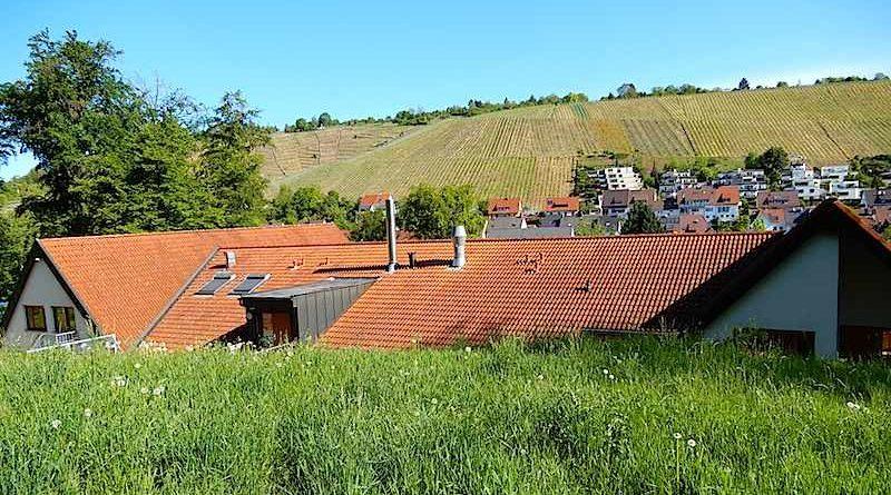 Unter dem Lenzenberg: Stadt favorisiert Wohnungen