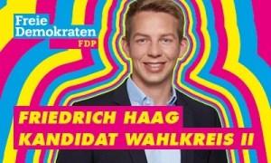 Bannerwerbung zur LTW 21 Friedrich Haag