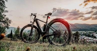 E-Mountainbike auf einer Wiese vor hügeligem Panorama