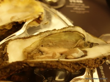 Pearl Dram - Dorset Rock Oyster