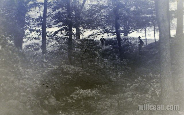 3-fellows-in-the-woods-det