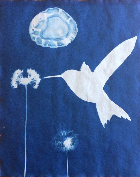 On-The-Verge-animal-artist-art-cyanotype-Will-Eskridge