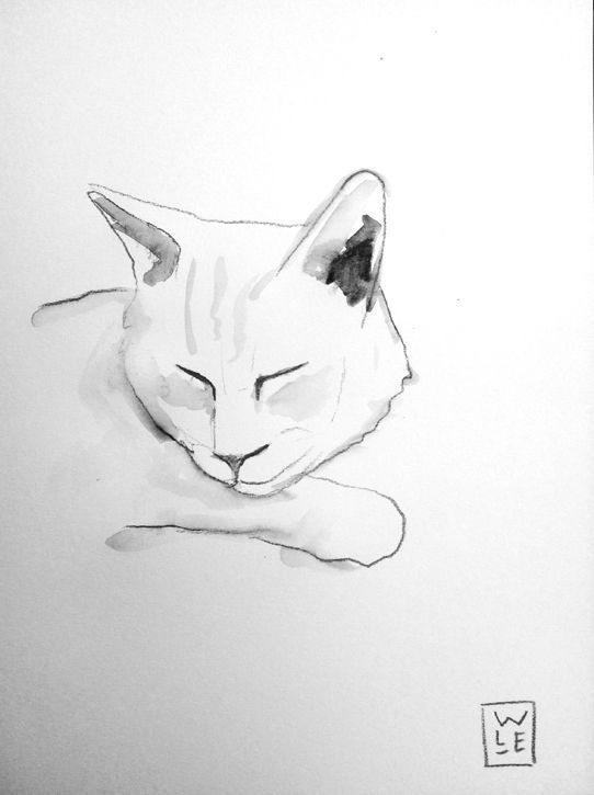 Cat Sleeping Animal Artist Art Will Eskridge