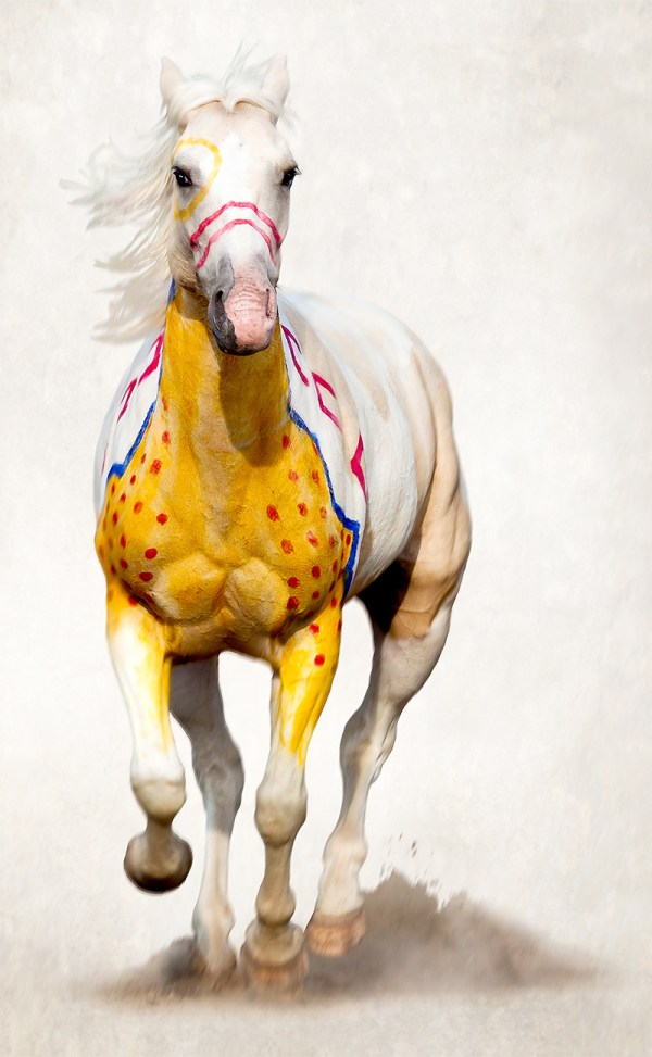 Art painted on the Crow Reservation. Running war pony.
