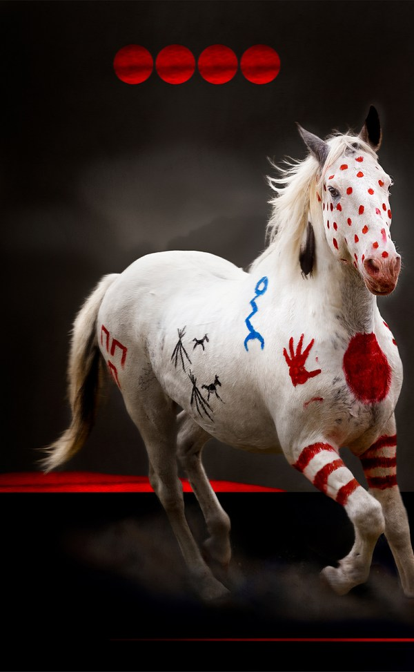 Art of Blackfeet war pony with 4 suns and painted dust.