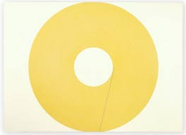 Circling (yellow), 2013, 24 x 33, resin, clay and pigment on aluminum composite panel