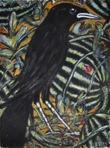 Common Crow (1)