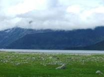 Alaska-20100729-20100807 051