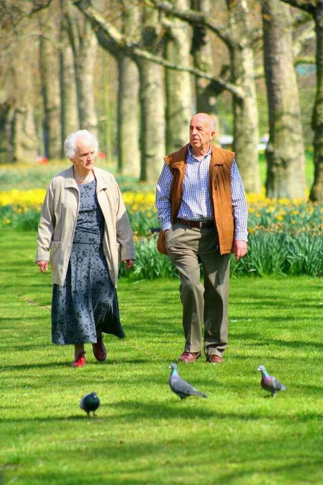 Image of a couple walking in a park for an article about how many seniors live in New Jersey.