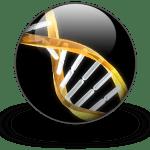 DNA double helix in sphere